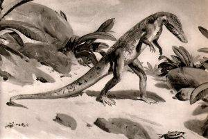 Black And White Dinosaurs,