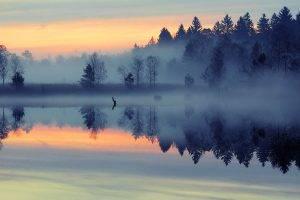lake, Forest, Nature, Sunset, Mist, Landscape