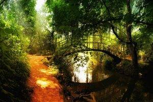 nature, Landscape, Bridge, Path, Trees, River, Plants