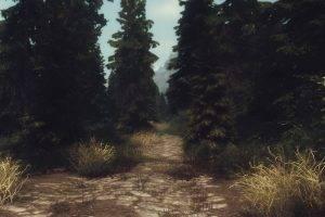 landscape, The Elder Scrolls V: Skyrim