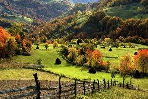 nature, Landscape, Trees, Forest, Mountain, Hill, Field, Grass, Fall, Fence, Hay, Haystacks, Sumadija