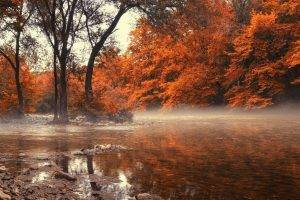 landscape, Nature, Fall, River, Greece, Forest, Mist, Water, Trees, Amber