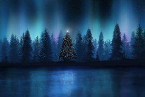 landscape, Christmas Tree, Aurorae, Forest