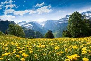 summer, Mountain, Clouds, Landscape