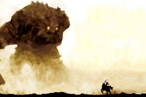 Shadow Of The Colossus, Video Games