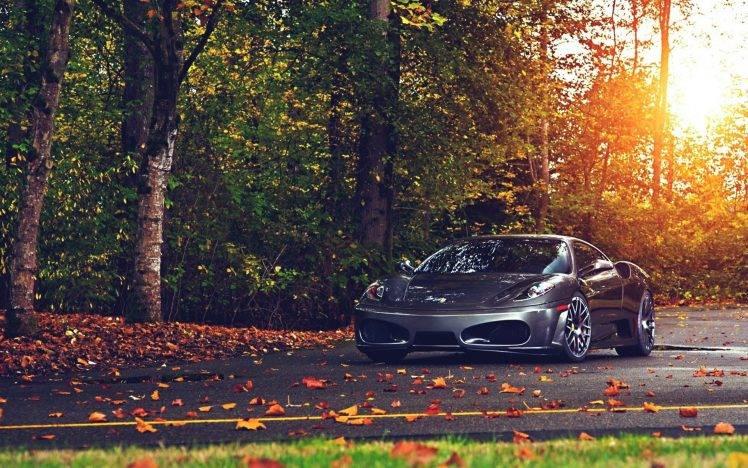 Ferrari, Ferrari F430, Car, Leaves HD Wallpaper Desktop Background