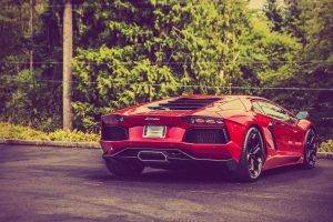 car, Lamborghini