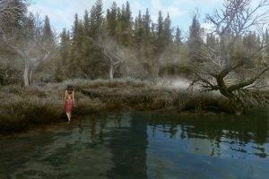 The Elder Scrolls V: Skyrim, Mods, Video Games