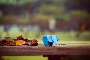 leaves, Fall, Depth Of Field, Animals, Origami, Elephants, Table, Trees, Park, Wood