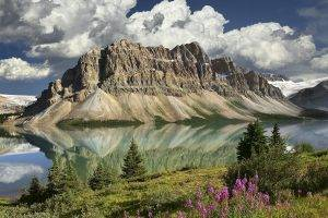 nature, Landscape, Mountain, Clouds, Canada, Lake, Trees, Flowers, Snow, Reflection