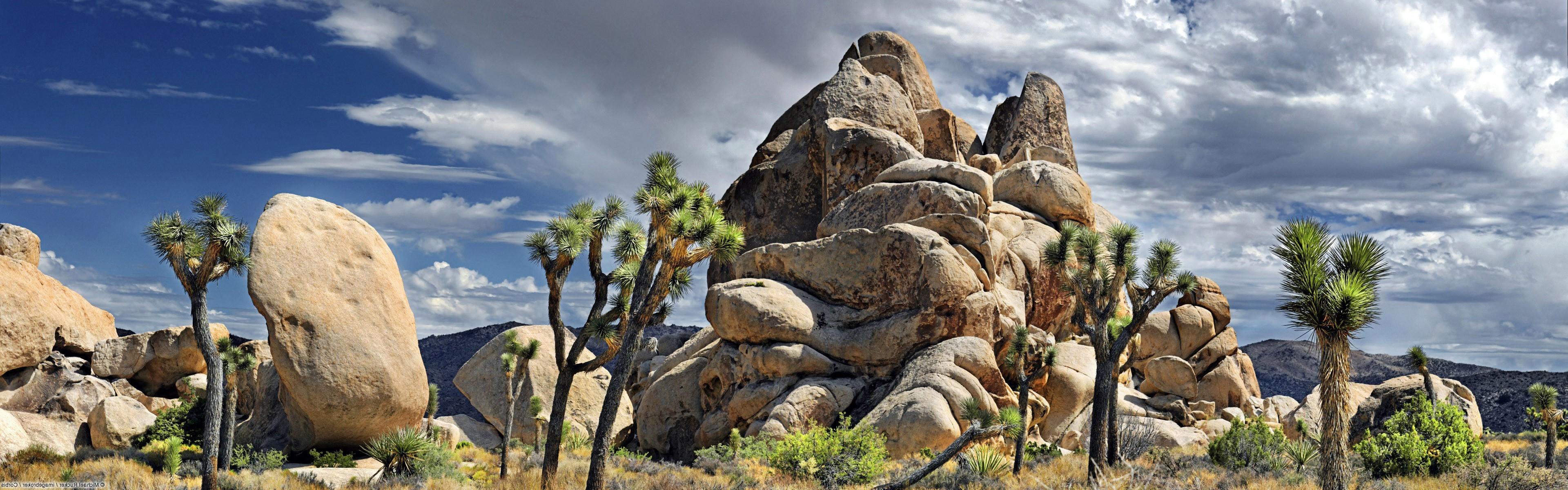 Nature Landscape Rock Joshua Tree National Park Wallpapers Hd Desktop And Mobile Backgrounds
