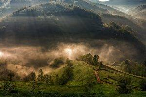 nature, Landscape, Mountain, Trees, Sun Rays, Mist, Morning, Forest, Village, Lights, Grass