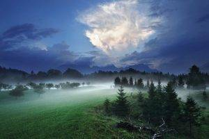 nature, Landscape, Night, Mist, Clouds, Forest, Hill, Grass