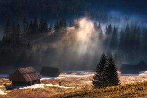 nature, Landscape, Sun Rays, Sunrise, Mountain, Forest, Mist, Cabin, Snow, Trees