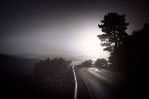 nature, Landscape, Monochrome, Road, Sunrise, Mountain, Trees, Shrubs, Mist, Lake, Dark, Horizon