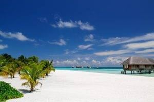 nature, Landscape, Beach, Maldives, Palm Trees, Sand, Tropical, Resort, Sea, Summer, Bungalow, Architecture, Island