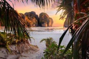 nature, Landscape, Beach, Sunset, Palm Trees, Shrubs, Rock, Cliff, Sea, Sand, Leaves, Philippines, Tropical, Island