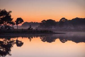 nature, Landscape, Sunrise, Lake, Mist, Trees, Water, Reflection, Forest, Calm, Netherlands