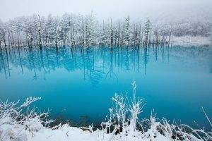 lake, Winter, Snow, Ice, Landscape, Nature