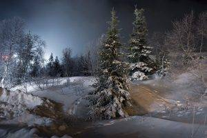 night, Landscape, Trees, Snow, Ice, Winter
