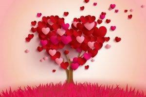 nature, Love, Love Love Life