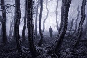 nature, Landscape, Trees, Forest, Mist, Monochrome, Winter, Branch, Snow, Frost, Men, Silhouette, Czech Republic