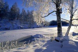 landscape, Winter, Snow, Trees