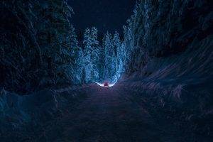 winter, Night, Nature, Forest, Snow, Path