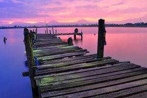 nature, Dock