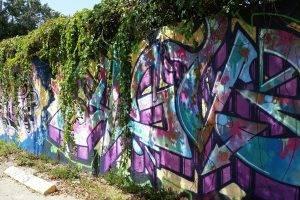 walls, Graffiti, Colorful, Miami, Nature