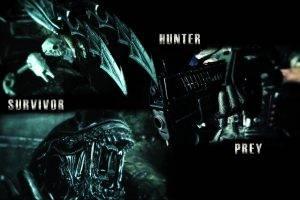 Predator (movie), Movies, Alien (movie)