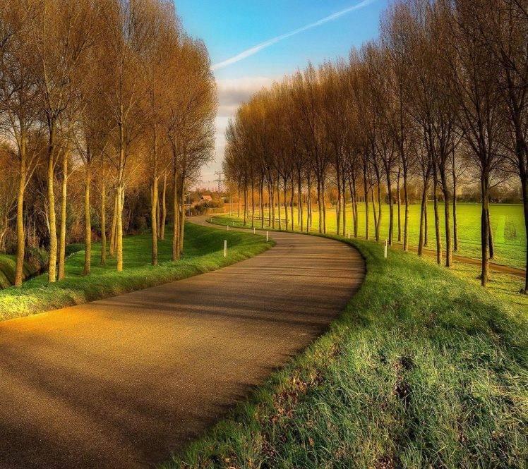 nature, Landscape, Road, Trees HD Wallpaper Desktop Background