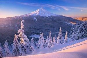 nature, Landscape, Sunrise, Mountain, Snow, Forest, Lake, Frost, Snowy Peak, Mount Hood, Winter, Pine Trees, Oregon