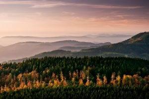 nature, Landscape, Mountain, Trees, Forest, Mist