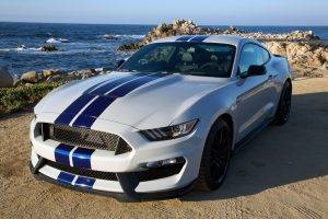 Ford Mustang Shelby, Muscle Cars, American Cars, White Cars, Pony, Shelby GT500, Shelby, Shelby GT350