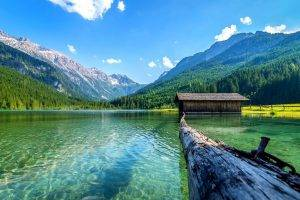 lake, Nature, Boathouses, Mountain, Landscape, Log, Summer, Forest, Daylight, Water, Austria
