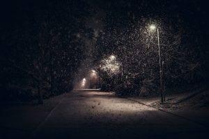 landscape, Nature, Street Light, Snow, Trees, Night, Urban, Shrubs, Calm, Winter