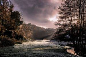 nature, Landscape, Morning, Sunlight, Creeks, Forest, Frost, Clouds, Sun Rays, Trees, Cold, UK