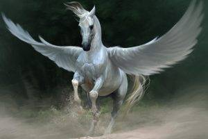 Pegasus, Artwork, Fantasy Art, Horse, Wings