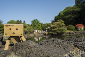 Danbo, Japan, Japanese, Japanese Garden, Nature, Tokyo, Osaka, Night, Relaxing, Anime, Amazon