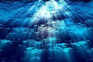 nature, Water, Sunlight
