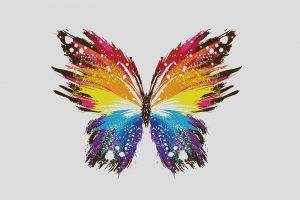 digital Art, Simple Background, Minimalism, Butterfly, Simple, Paint Splatter, Wings, Colorful, White Background