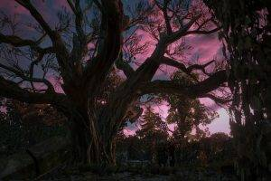 The Witcher 3: Wild Hunt, Geralt Of Rivia, Yennefer Of Vengerberg, Garden