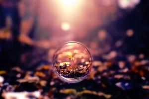 bubbles, Macro, Bokeh, Plants, Blurred