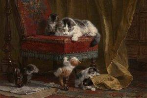 artwork cat chair kittens curtains
