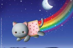 cat feline animals food memes rainbows moon stars sky night nyan cat
