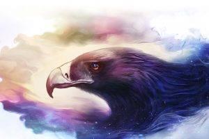 fantasy art eagle artwork animals
