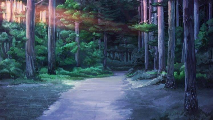 Everlasting Summer, Forest clearing, Sunlight HD Wallpaper Desktop Background