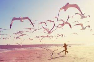 beach, Seagulls, Children, Photography
