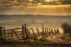 nature, Photography, Sunlight, Grass, Fence